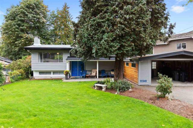 11341 Royal Crescent, Surrey, BC V3V 2S8 (#R2312413) :: Vancouver Real Estate