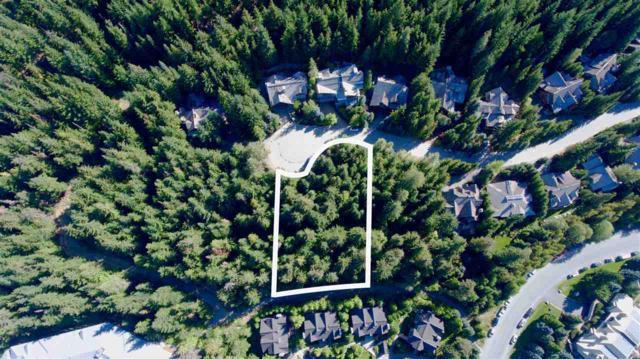 4966 Horstman Lane, Whistler, BC V0N 1B4 (#R2313382) :: TeamW Realty