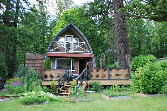 43817 Ryall Road, Mission, BC V0M 1N0 (#R2313722) :: Vancouver Real Estate