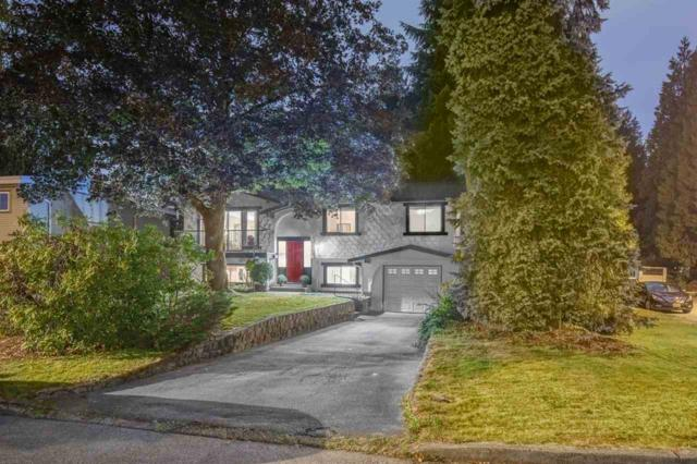 1153 Blue Heron Crescent, Port Coquitlam, BC V3B 1W9 (#R2313918) :: TeamW Realty