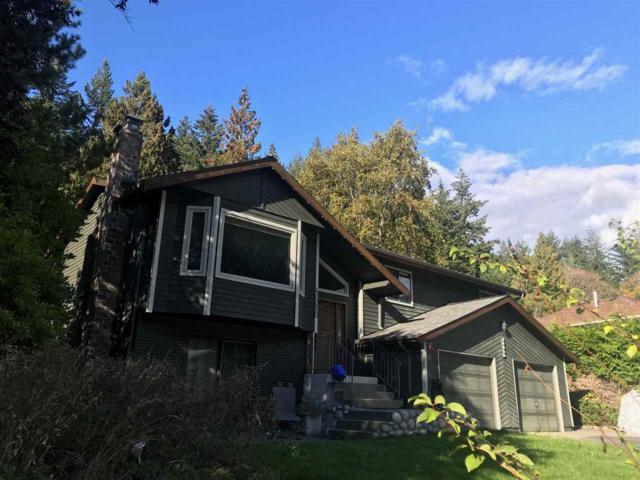 40050 Plateau Drive, Squamish, BC V0N 3G0 (#R2314232) :: Vancouver Real Estate