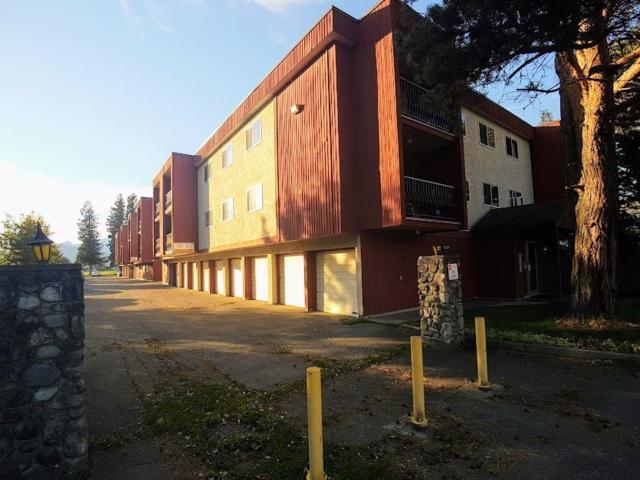 1735 Agassiz-Rosedale Highway #216, Agassiz, BC V0M 1A0 (#R2314753) :: TeamW Realty