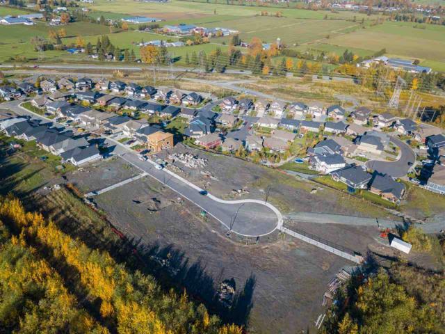 51104 Zander Place, Chilliwack, BC V4Z 0C1 (#R2315046) :: JO Homes | RE/MAX Blueprint Realty