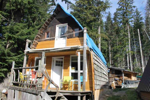 8 Jones Lake Forest Service Road, Hope, BC V0V 0V0 (#R2315071) :: TeamW Realty