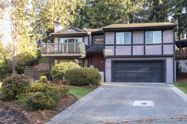 11107 York Place, Delta, BC V4E 2W9 (#R2315268) :: TeamW Realty