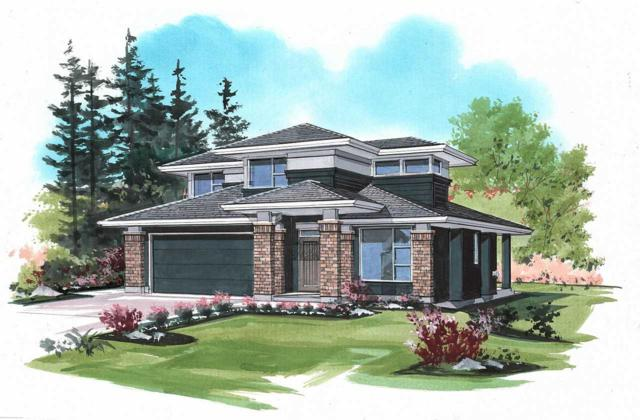 52770 Stonewood Place, Rosedale, BC V0X 1X1 (#R2315302) :: TeamW Realty