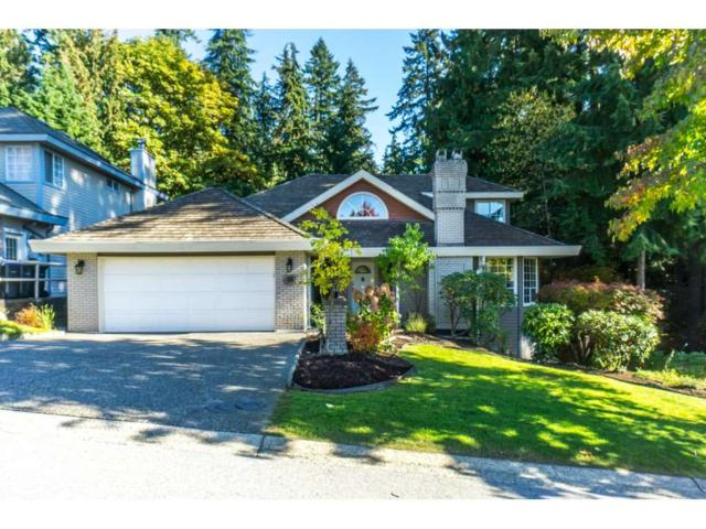 18 Timbercrest Drive, Port Moody, BC V3H 4T6 (#R2315660) :: West One Real Estate Team