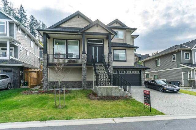 33932 Mcphee Place, Mission, BC V2V 0E7 (#R2315968) :: TeamW Realty