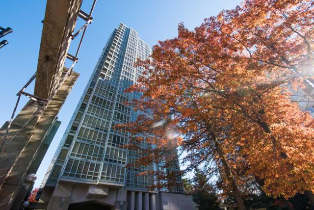 930 Cambie Street #903, Vancouver, BC V6B 5Y1 (#R2316658) :: West One Real Estate Team
