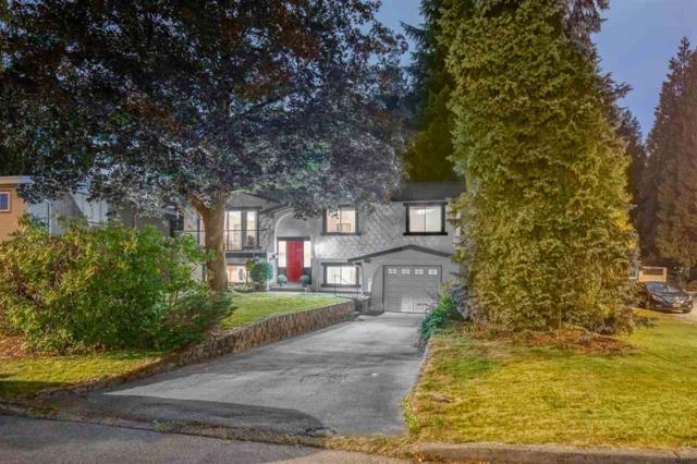 1153 Blue Heron Crescent, Port Coquitlam, BC V3B 1W9 (#R2318502) :: West One Real Estate Team