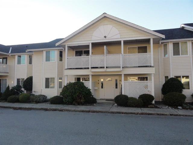 20799 119 Avenue #3, Maple Ridge, BC V2X 9S7 (#R2320865) :: West One Real Estate Team