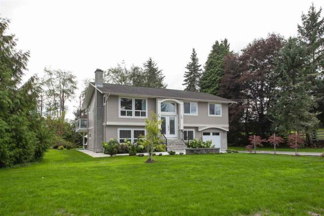 24706 16 Avenue, Langley, BC V2Z 1J4 (#R2321488) :: Premiere Property Marketing Team