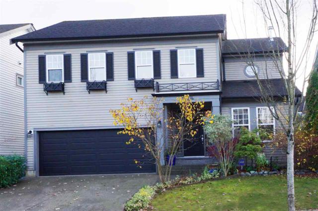 19574 Hoffmann Way, Pitt Meadows, BC V3Y 2W8 (#R2321495) :: West One Real Estate Team