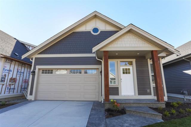 646 Schooner Place, Harrison Hot Springs, BC V0M 1K0 (#R2321621) :: West One Real Estate Team