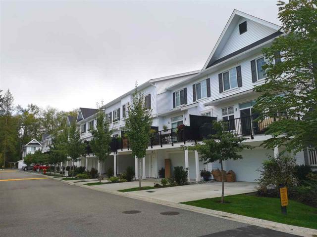 288 171 Street #17, Surrey, BC V3Z 9P5 (#R2321724) :: West One Real Estate Team