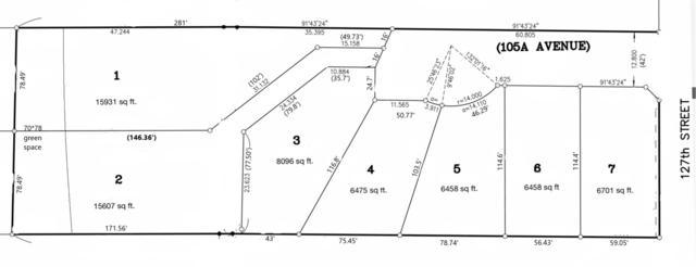 12660 105A Avenue, Surrey, BC V3V 5K3 (#R2322207) :: West One Real Estate Team