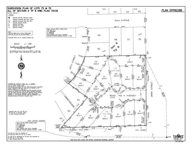 6239 188 Avenue Lot1, Surrey, BC V3S 7V8 (#R2322600) :: West One Real Estate Team