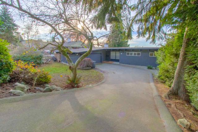 10433 125A Street, Surrey, BC V3V 5A1 (#R2322652) :: West One Real Estate Team