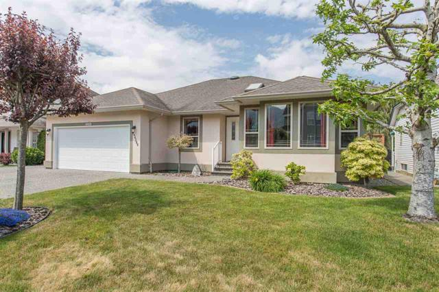 44389 Elsie Place, Sardis, BC V2R 5L1 (#R2322906) :: Vancouver House Finders