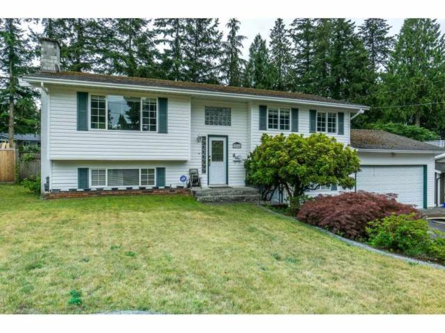 20504 43 Avenue, Langley, BC V3A 3C2 (#R2323062) :: Premiere Property Marketing Team