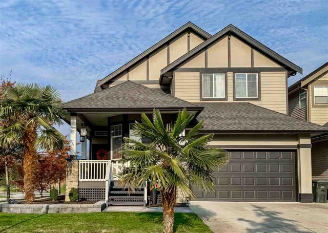 19801 Silverthorne Place, Pitt Meadows, BC V3Y 2W4 (#R2323071) :: West One Real Estate Team