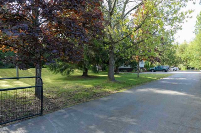 23760 68 Avenue, Langley, BC V2Y 2H7 (#R2323418) :: Premiere Property Marketing Team