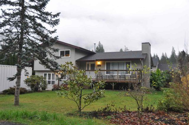 841 Angus Place, Harrison Hot Springs, BC V0M 1K0 (#R2323497) :: West One Real Estate Team