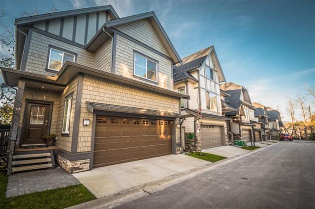 8217 204B Street #77, Langley, BC V2Y 0V6 (#R2327619) :: JO Homes   RE/MAX Blueprint Realty