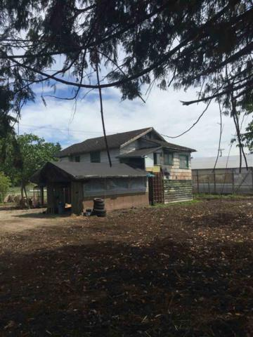 8039 Willard Avenue, Burnaby, BC V3N 1X2 (#R2327637) :: Vancouver House Finders