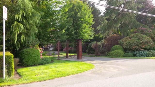23118 88 Avenue, Langley, BC V1M 2S5 (#R2329247) :: Premiere Property Marketing Team