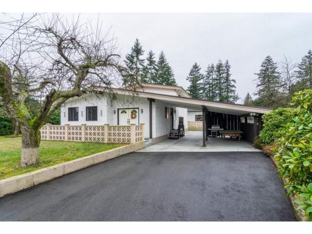 5905 248 Street, Langley, BC V4W 1C3 (#R2329309) :: Premiere Property Marketing Team