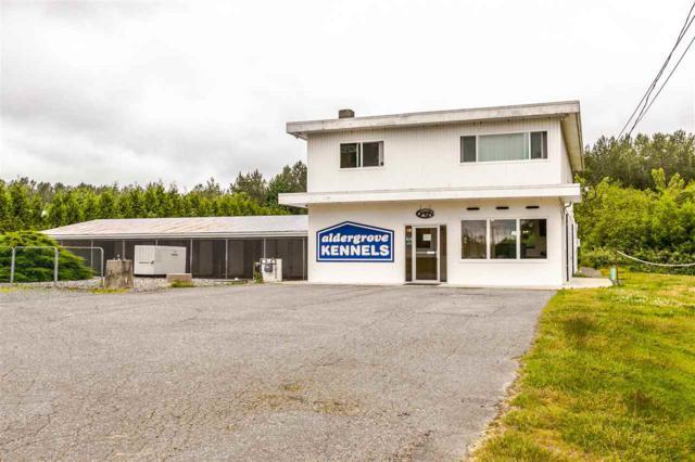 26306 56 Avenue, Langley, BC V4W 1J7 (#R2329529) :: Premiere Property Marketing Team