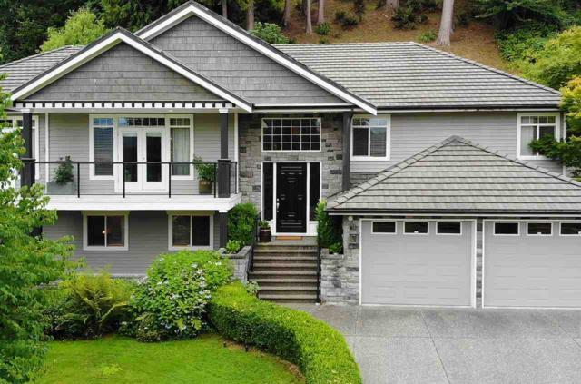 25760 82 Avenue, Langley, BC V1M 2M8 (#R2329859) :: Premiere Property Marketing Team