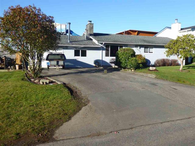 2993 270B Avenue, Langley, BC V4W 3C3 (#R2330403) :: Premiere Property Marketing Team