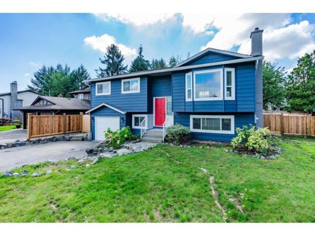 27100 34A Avenue, Langley, BC V4W 3H3 (#R2331111) :: Premiere Property Marketing Team