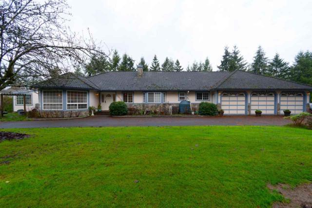 23779 62 Avenue, Langley, BC V2Y 1M2 (#R2331191) :: Premiere Property Marketing Team