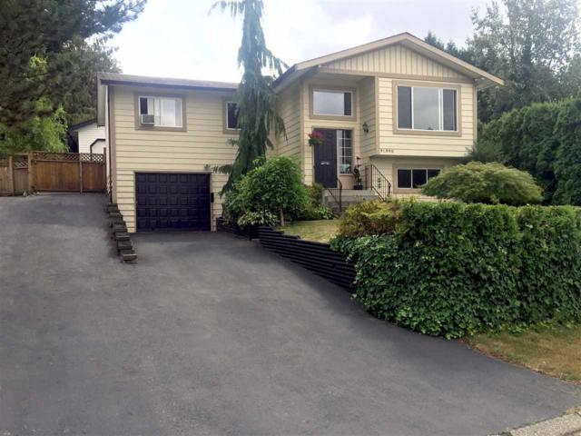 31390 Windsor Court, Abbotsford, BC V2T 6L8 (#R2332135) :: Premiere Property Marketing Team