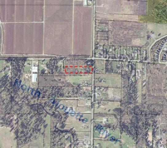 13557 224 Street, Maple Ridge, BC V4R 2P8 (#R2332365) :: Royal LePage West Real Estate Services