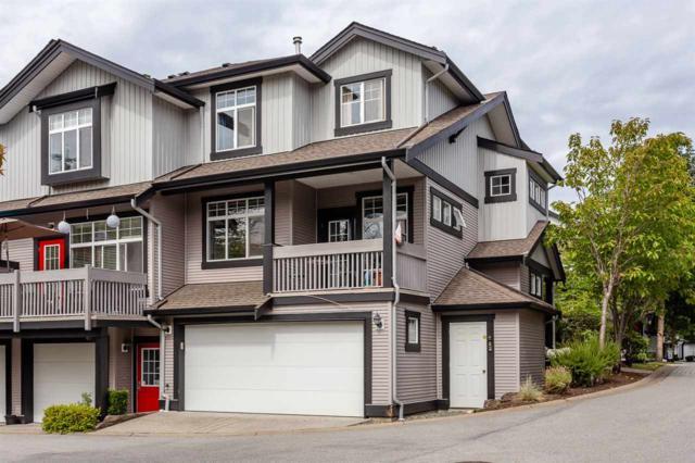 18828 69 Avenue #12, Surrey, BC V4N 5L3 (#R2332691) :: Homes Fraser Valley