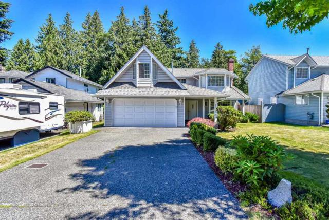 6114 134A Street, Surrey, BC V3X 1L9 (#R2332938) :: Homes Fraser Valley