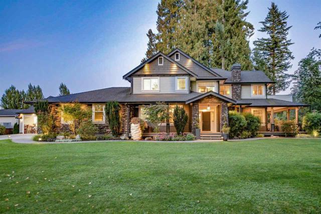 4600 233 Street, Langley, BC V2Z 2S3 (#R2333042) :: Premiere Property Marketing Team