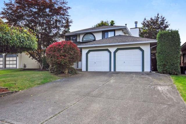 9195 211B Street, Langley, BC V1M 2C3 (#R2333119) :: Premiere Property Marketing Team