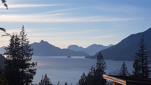 824 Minaty Lane, Squamish, BC V0N 1J0 (#R2333327) :: Vancouver Real Estate