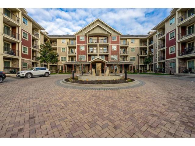 22323 48 Avenue #305, Langley, BC V3A 3N4 (#R2333329) :: Homes Fraser Valley