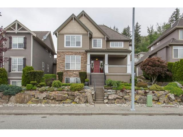 2567 Eagle Mountain Drive, Abbotsford, BC V3G 3A1 (#R2333596) :: Premiere Property Marketing Team