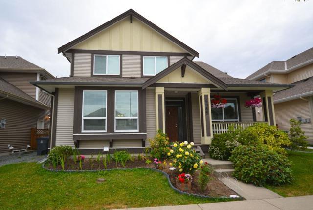 6965 195 Street, Surrey, BC V4N 5Y6 (#R2334060) :: Premiere Property Marketing Team