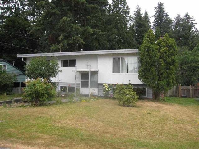 21485 123 Avenue, Maple Ridge, BC V2X 4C1 (#R2334201) :: Premiere Property Marketing Team