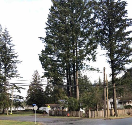 63862 Marv Cope Way, Hope, BC V0X 1L2 (#R2340133) :: Vancouver Real Estate