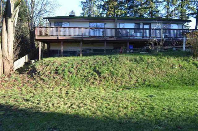 10027 120 Street, Surrey, BC V3V 4E3 (#R2340931) :: Vancouver Real Estate