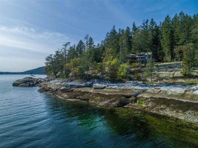 14397 Arthurs Point Road, No City Value, BC V8A 0N1 (#R2341737) :: TeamW Realty
